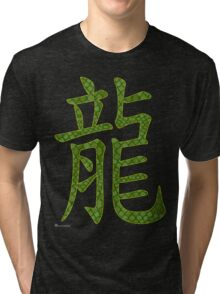 Dragon in Chinese The Backbone of the Earth  Tri-blend T-Shirt