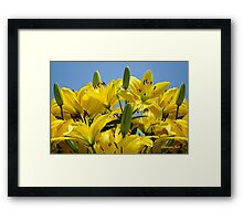 Yellow Lilies Sky High Framed Print