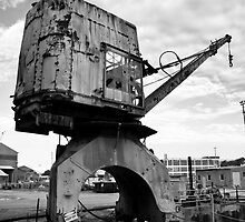 Crane (Cockatoo Island) by Ben Herman