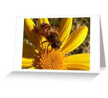 Drone Fly Greeting Card