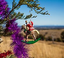 Christmas Ornament by NicoleCurtis