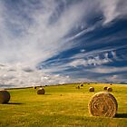 Hay Bales by Peter Daalder