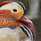 Peking Duck by Peter Stratton