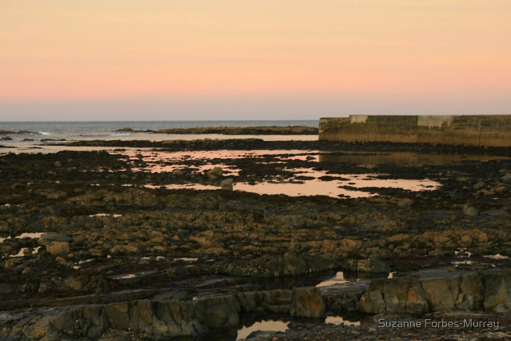 sunset on the Rocks by Suzanne Forbes-Murray