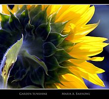 Garden Sunshine - Cool Stuff by Maria A. Barnowl