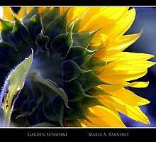 Garden Sunshine - Cool Stuff by Maria A. Barnowl