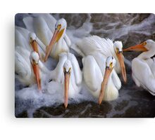 tightly knit group Canvas Print