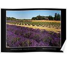 Lavender Farm - Cool Stuff Poster