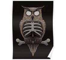Dead Owl Poster