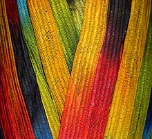 Yarn 1 by Jeffrey  Sinnock