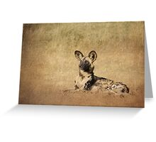 Wild Dog. Greeting Card