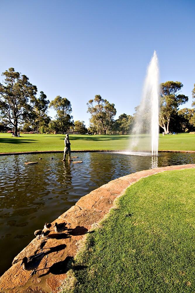 Kings Park - Perth - Western Australia by Mark Baker