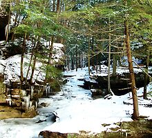 Icy Stream by Paul S.  Atkinson