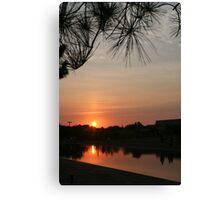 pine sunset Canvas Print