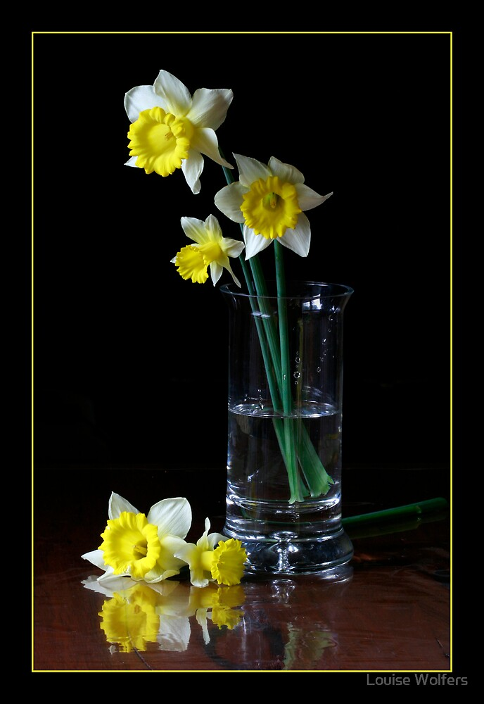Daffodils by Louise Wolfers