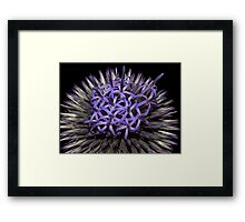 Flower Power ! Framed Print