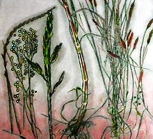 "Mornington Peninsula Grasslands 10 by Belinda ""BillyLee"" NYE (Printmaker)"