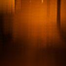 Night lines 2 by brilightning