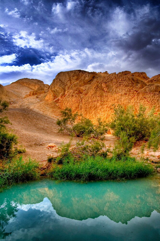 Tunisia mountian oasis by Stojs