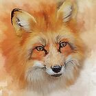 The Red Fox by Tarrby