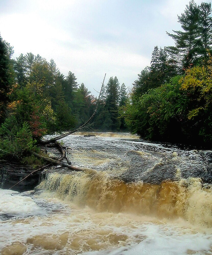 Autumn Falls by Erika Benoit