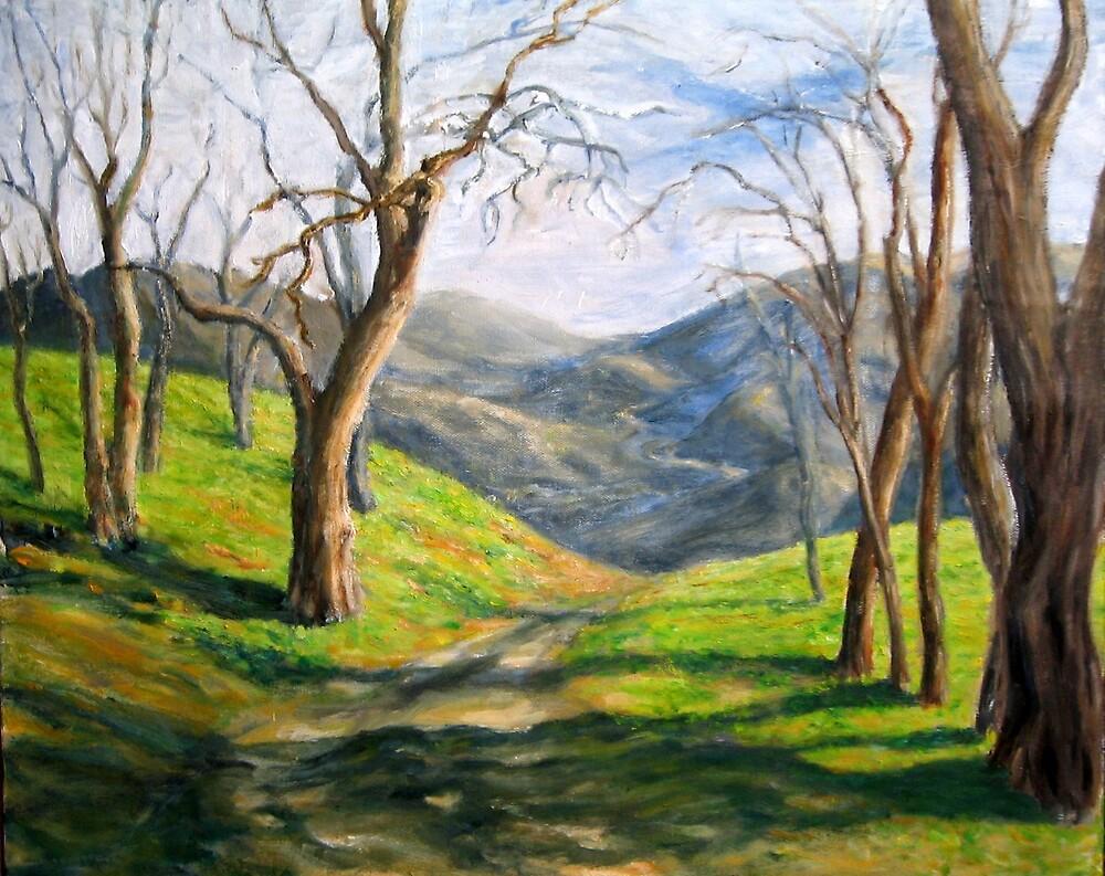 Simi Hills by menqtsai