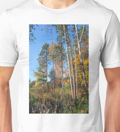 Fall Colors Along the Norway Beach Loop Unisex T-Shirt