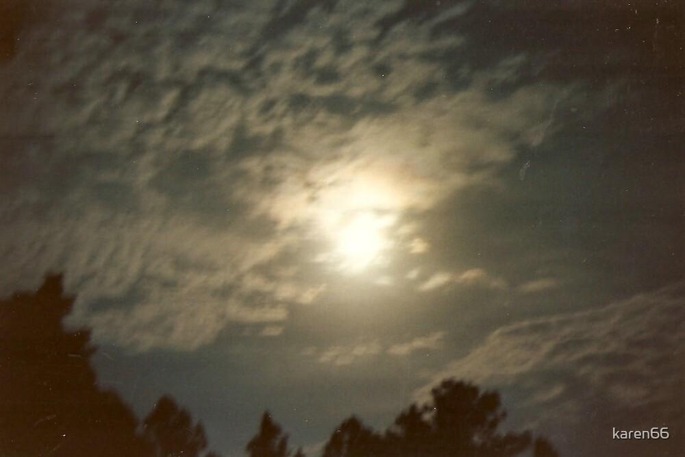 Moonlit Night by karen66