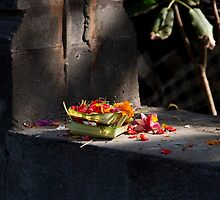 Offerings by byronbackyard