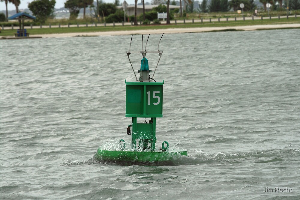 Motorized Buoy by Jim Roche