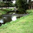 Stream at Burrs Country Park by JImage