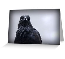 Crow protector Greeting Card