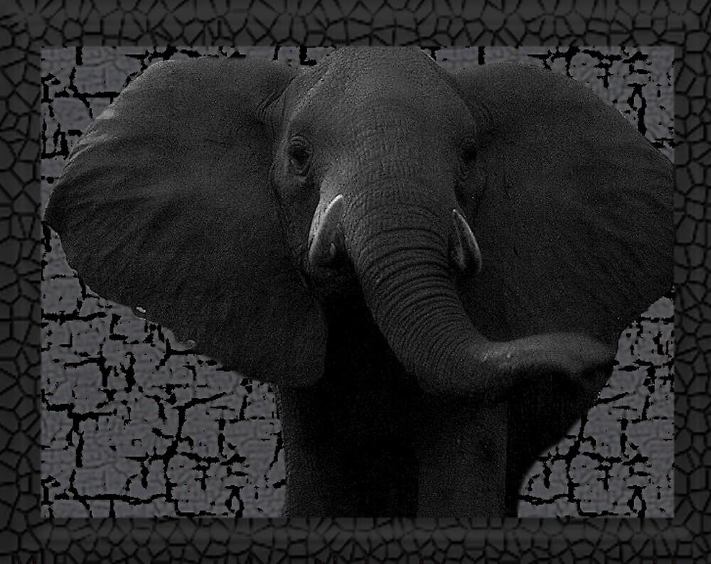 elephant by CheyenneLeslie Hurst