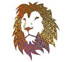 'Tis a Lion. Rar. Photographic Print