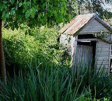 Backyard toilet by Phil Atkinson