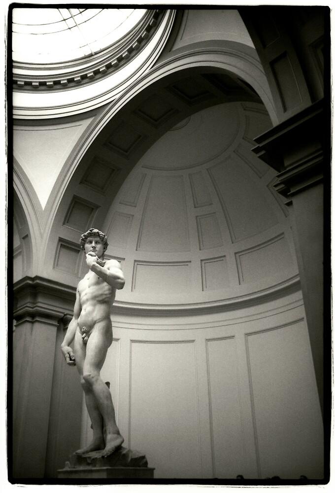 Michaelangelo's David by laurencedodd