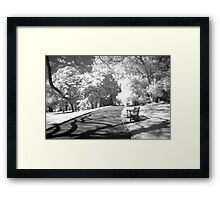 ...sleepless in Sydney... Framed Print