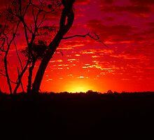 Sun Rise by jennybenn91