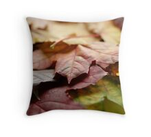 Mother Natures Dreamcoat Throw Pillow