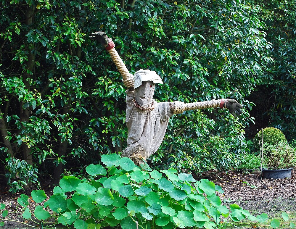 Scarecrow by shakey