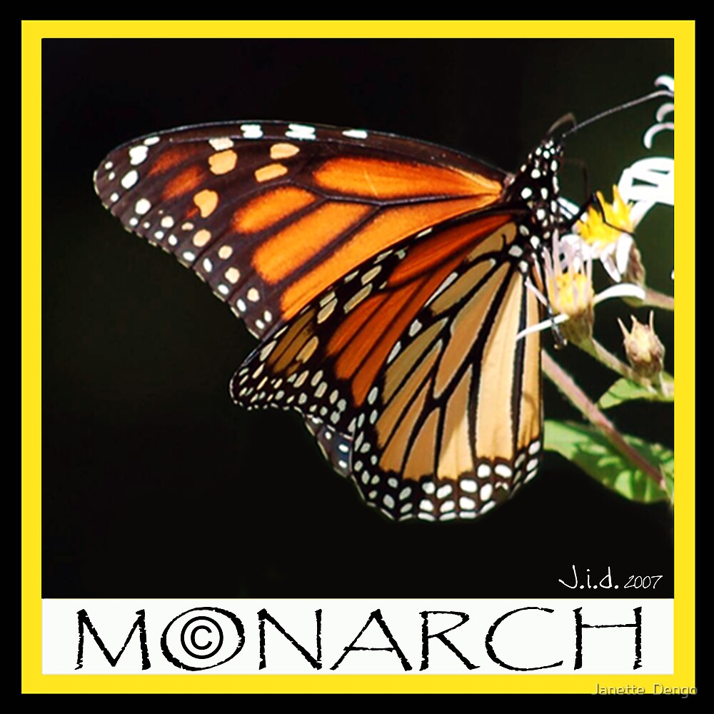 MONARCH by Janette  Dengo