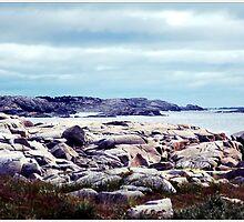 Shoreline by Kathleen Struckle