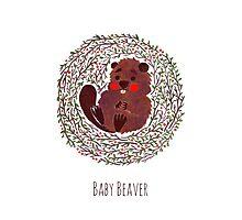 Baby Beaver Photographic Print