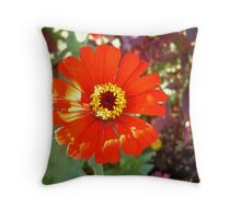 BULLS EYE! Throw Pillow