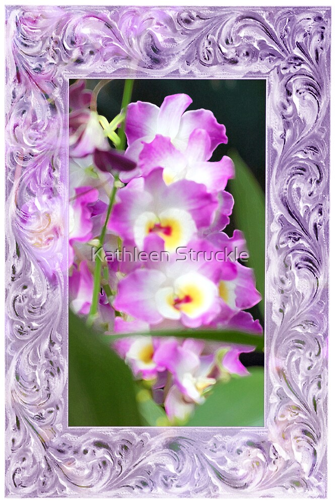 Pretty Orchids by Kathleen Struckle