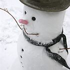 Snowman by cshphotos