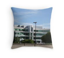 Glass Office Building Throw Pillow