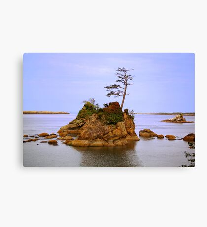 A Tiny Island Canvas Print