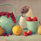 Snoozy loves fruit by Ellen van Deelen