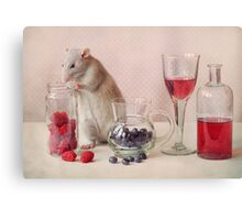 Jimmy in still life Canvas Print